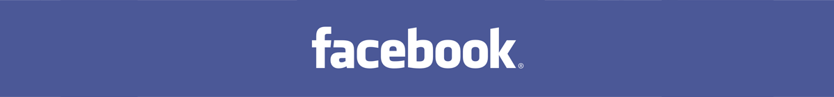 Facebook Global Internet Consulting